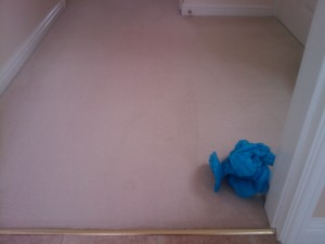 spot and stain removal oxfordshire