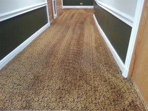 business-carpet-cleaning-thame