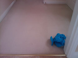 carpet-stain-removal-oxford-after