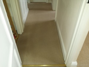 carpet cleaning companies oxford