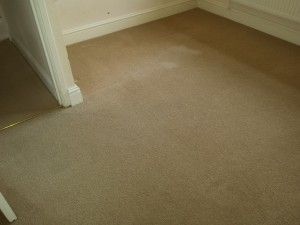 carpet cleaning specialists oxford