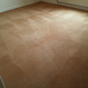 carpet cleaning company bicester