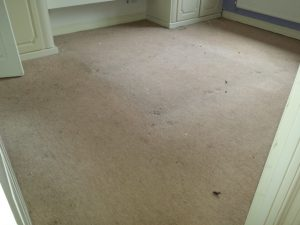 carpet cleaners banbury