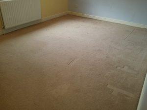 carpet cleaning banbury