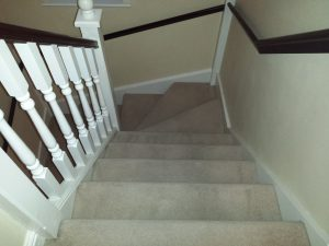 carpet cleaning professionals in banbury