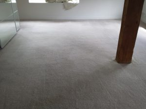 carpet cleaners in Banbury