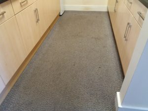 Professional office carpet cleaning Oxford