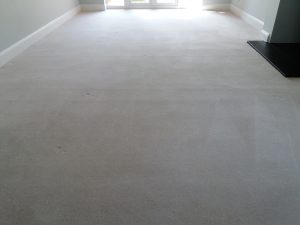 new build carpet cleaners oxford