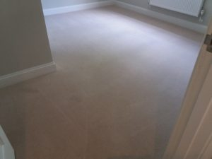 new build carpet cleaning oxford