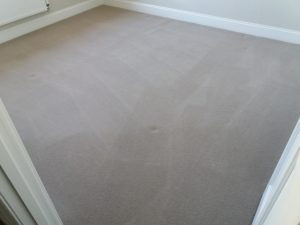 new carpet cleaning oxford