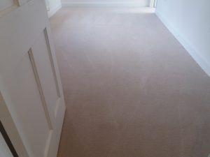 show home carpet clean oxford
