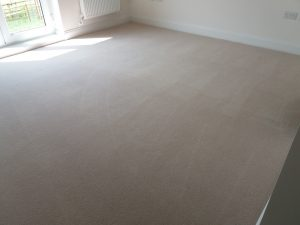 show home carpet cleaning oxford
