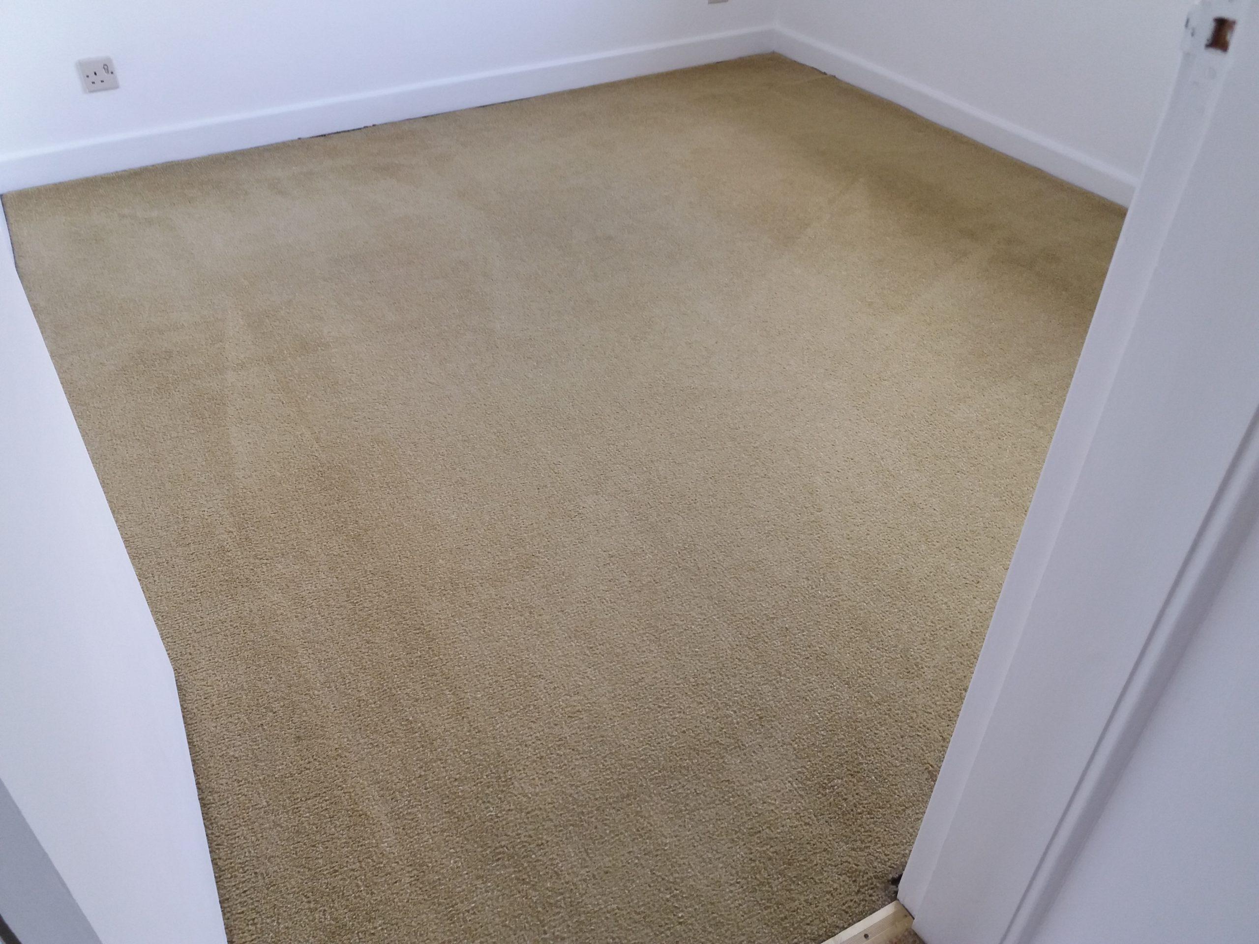 carpet cleaners adderbury