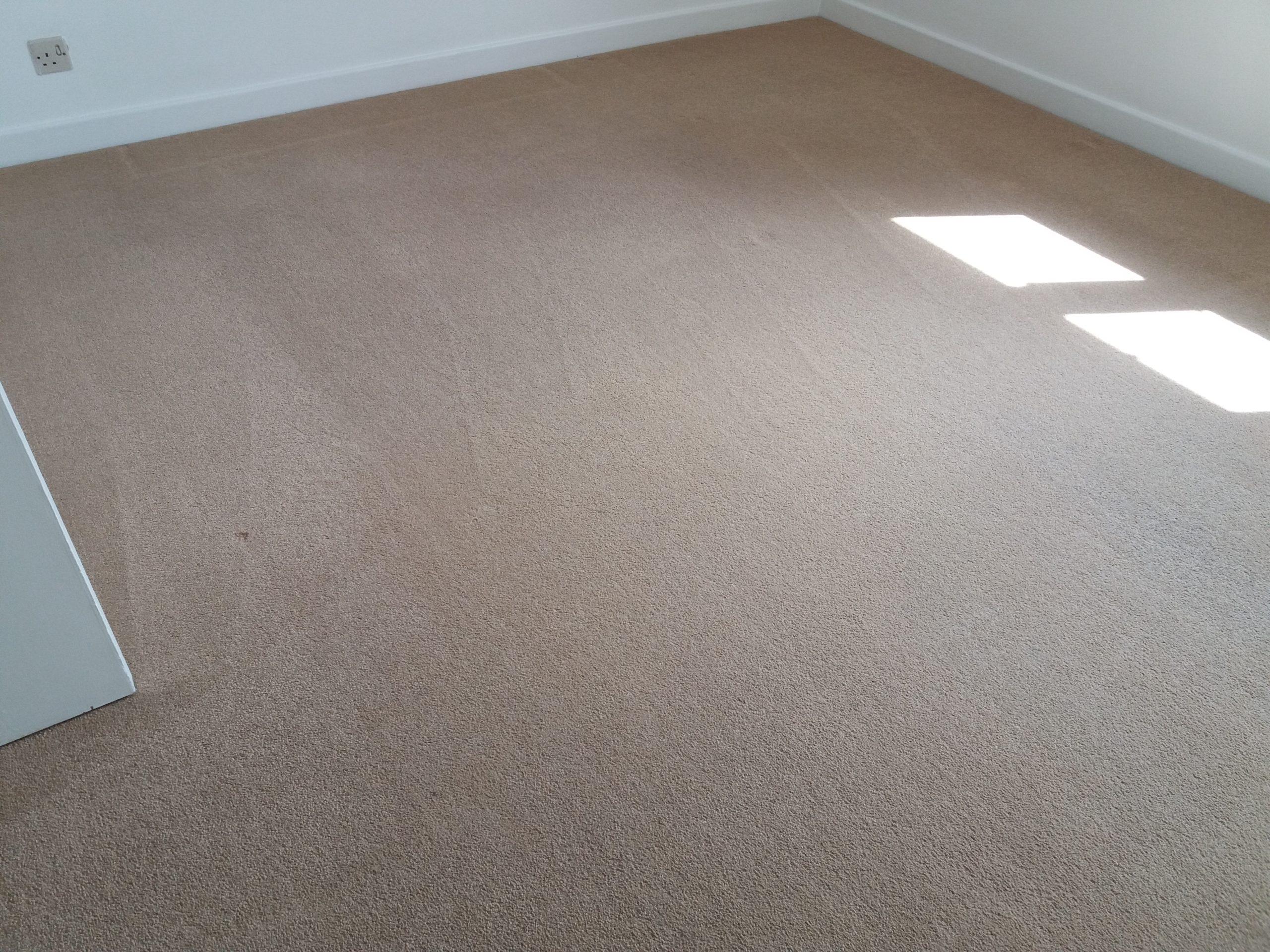 carpet cleaners in adderbury