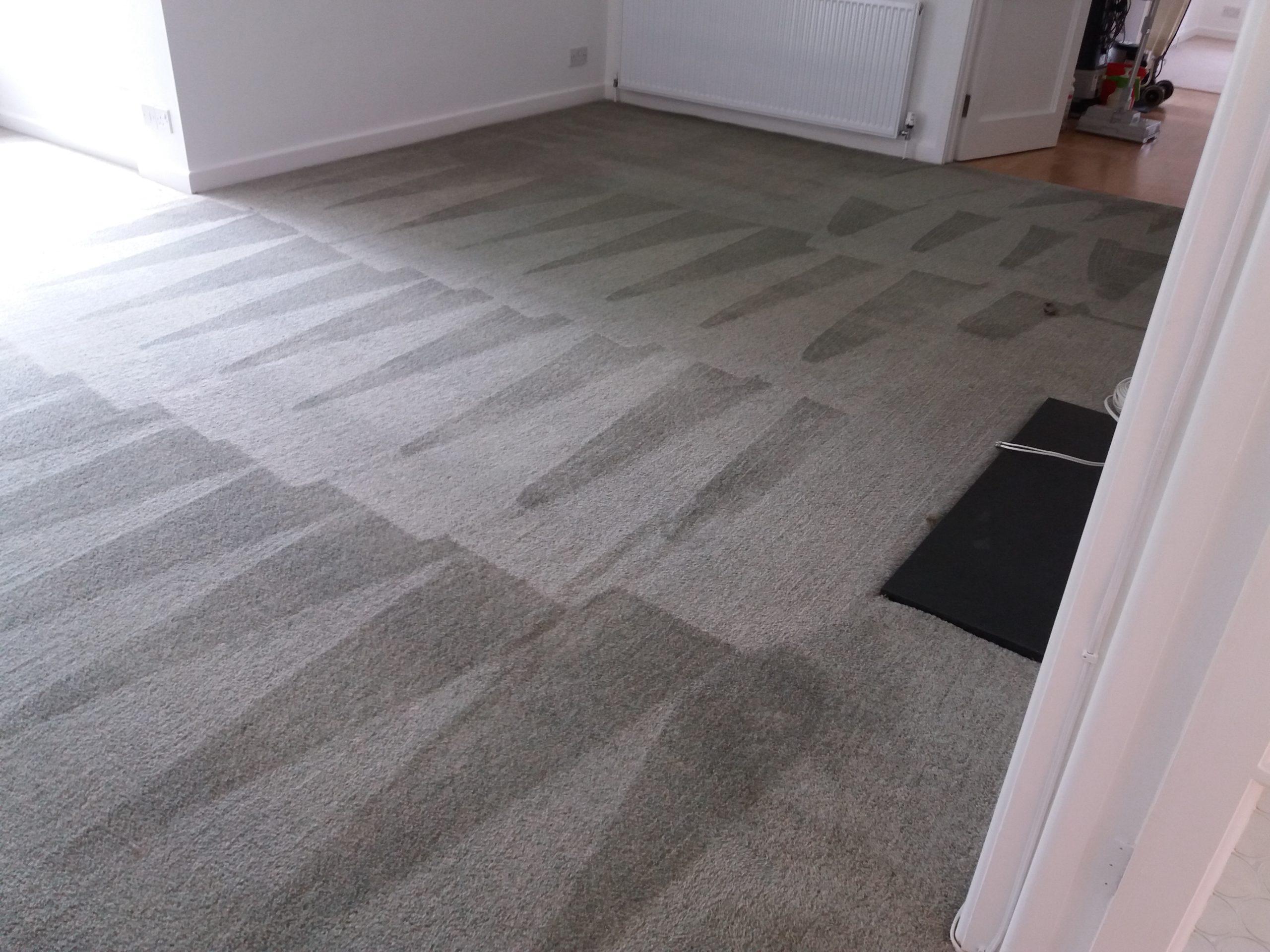 carpet cleaning companies adderbury