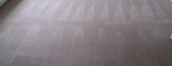 carpet cleaning services adderbury