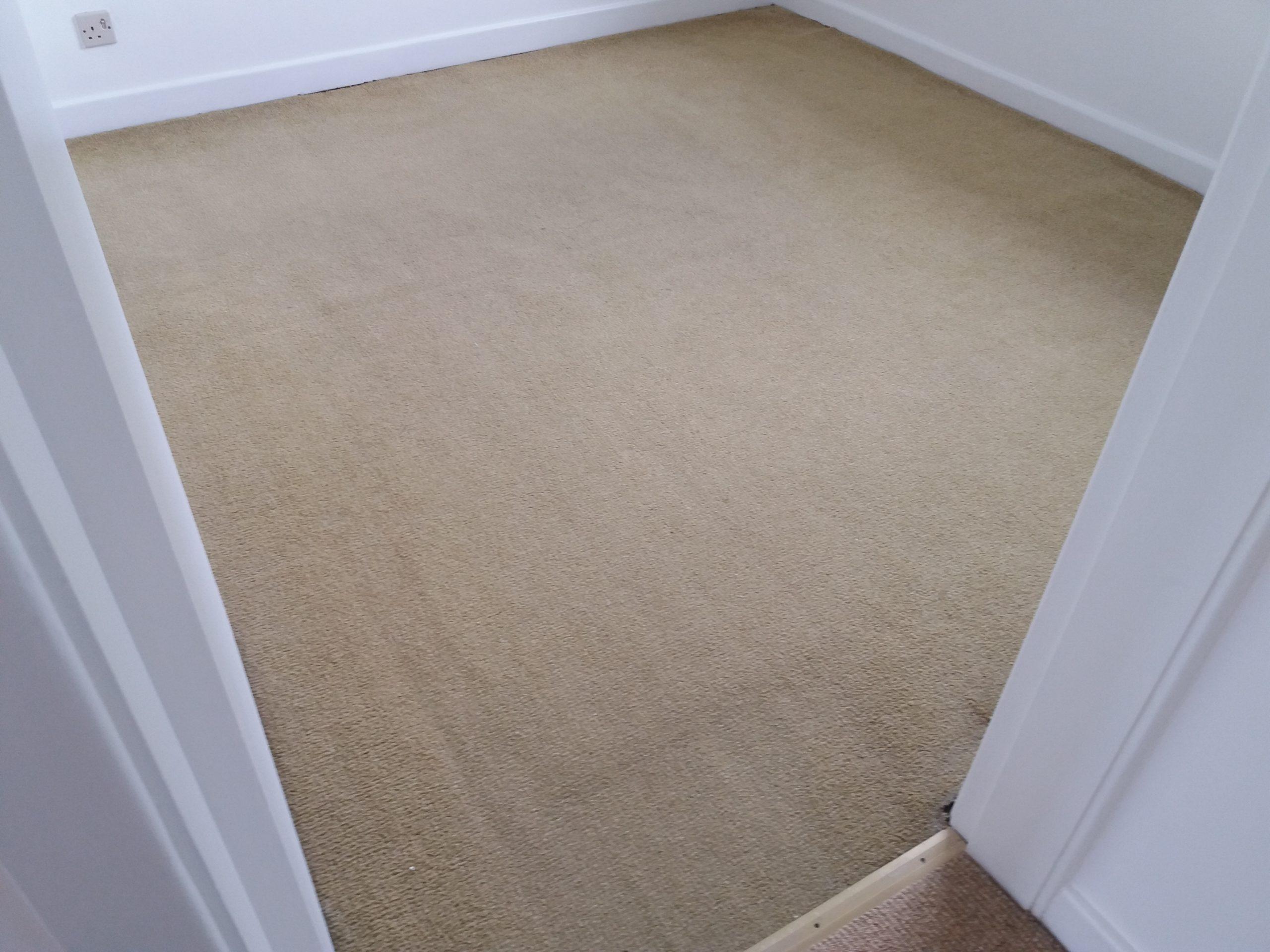 professional carpet cleaning adderbury